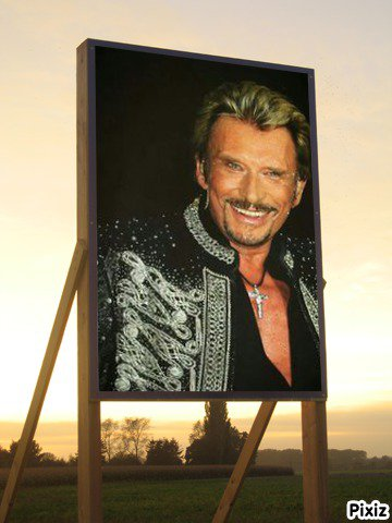JOHNNY HALLYDAY LE ROCK'N'ROLL EST NE