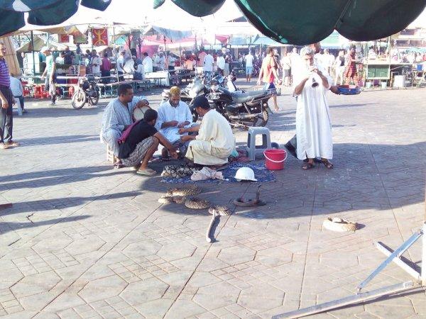 Vacance a Marrakech