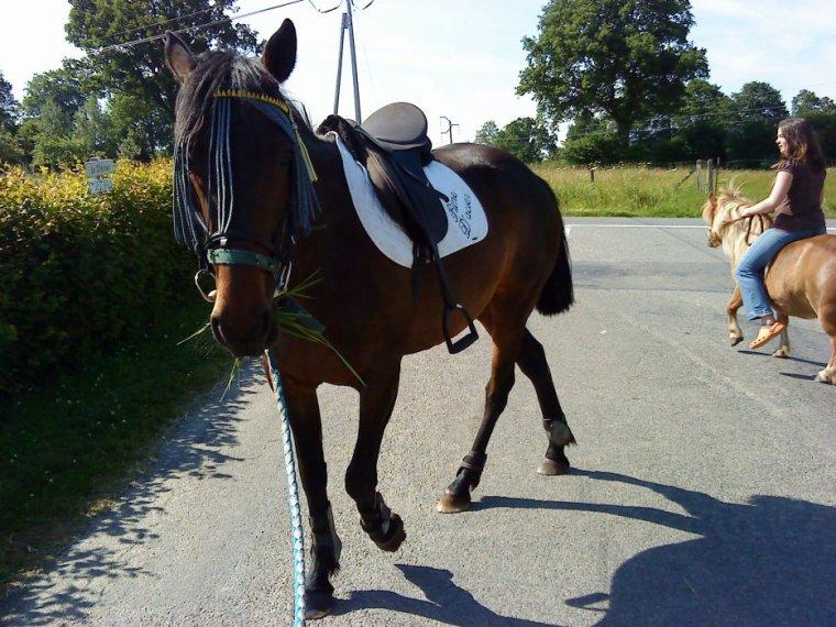 Monter à cheval enivre comme le vin. Une fois en selle, on perd la raison et on commence à se balancer comme dans un rêve héroïque.