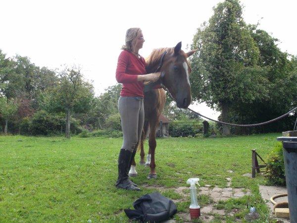 """"""" Le cheval est un le mélange d'ange et de vent. """""""