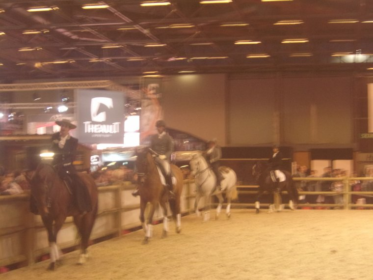 Salon du cheval à Paris 2017