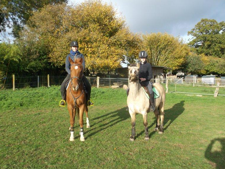 'Le cheval est une chose de beauté qu'aucun ne fatiguera à le regarder tant qu'il se montre dans sa splendeur.'
