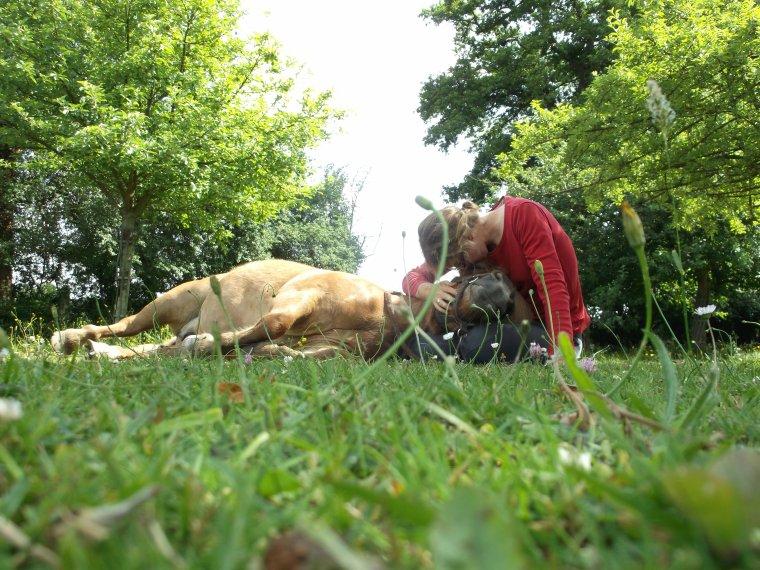 """""""Tant que vous n'avez pas aimé un animal, une partie de votre âme sera toujours sans éclat, endormie."""""""