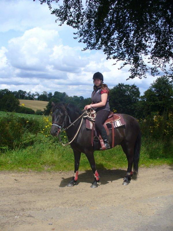 """""""Le cheval enseigne à l'homme la maîtrise de soi, et la faculté de s'introduire dans les pensées et les sensations d'un autre être vivant. """""""