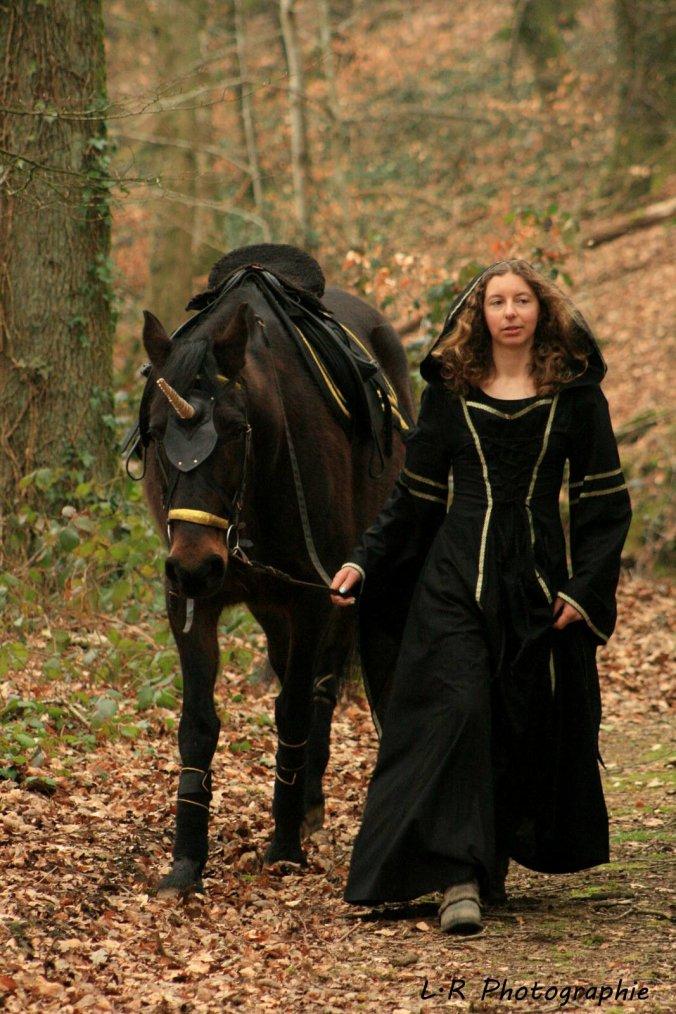 """"""" La licorne fut créée par sorcellerie pour permettre aux preux chevaliers de combattre en tournoi les mains dans les poches. """""""