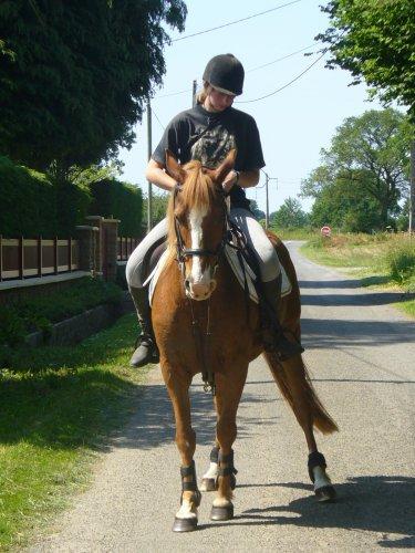 """""""Le respect du cheval, c'est la fondation de la liberté."""""""