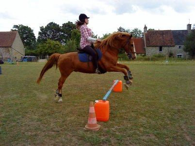 """""""L'équitation est la plus noble expression d'une union charnelle."""""""
