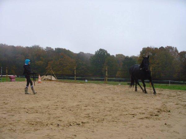 """""""Même sans cavalier, un cheval sera toujours un cheval. Tandis qu'un cavalier sans cheval n'est qu'un homme..."""""""