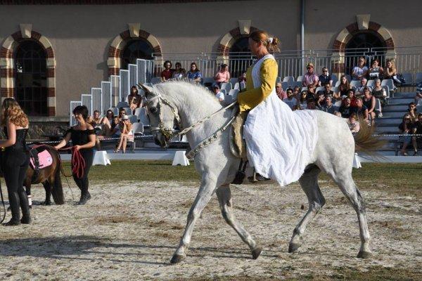 Normandie Horse Show de St Lo 2018