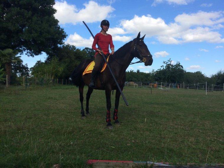 """""""il se peut que le cheval ne fasse pas ce qui est juste par rapport à ce que lui demande le cavalier, mais il se peut qu'il fasse juste selon son point de vue à lui"""""""