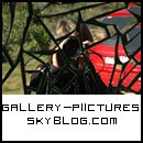 Photo de gallery-piictures