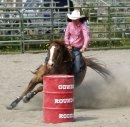 Photo de diary-horse