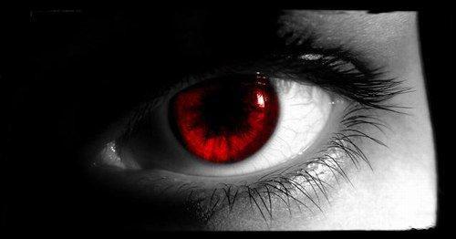 -- La Rose Noire : Chapitre 4 --