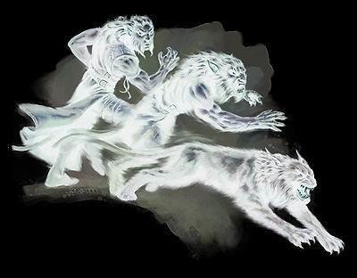 Expressions et Dictons sur le loup