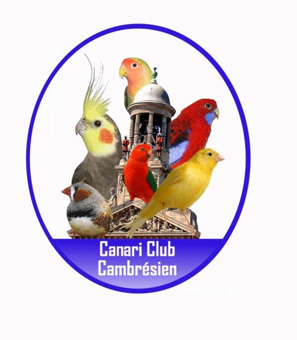 PRÉSENTATION DU CANARI CLUB CAMBRESIEN