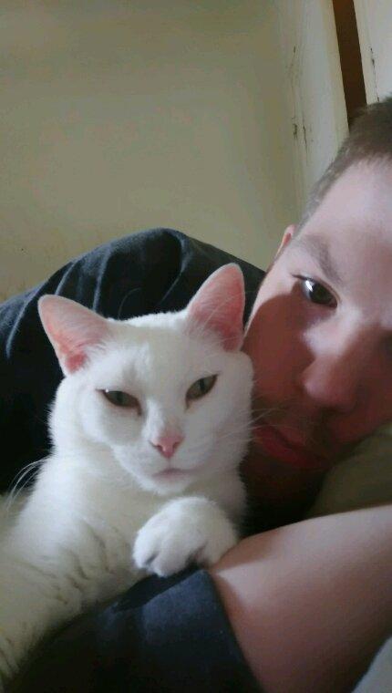 Mon amour de chatte