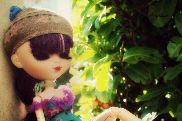 →Sunset Of June←