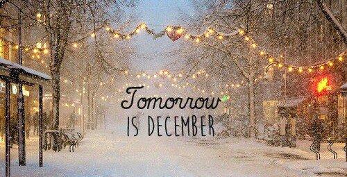 """Mise au point de novembre et """"programme"""" de décembre."""