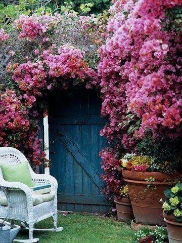 jardins en tout genres