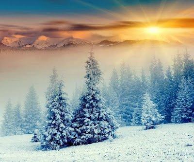 .paysages enneigé