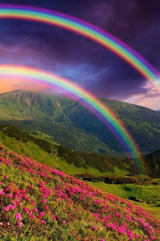 arc en ciel de couleurs