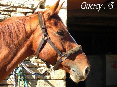 Quercy Du Meix .