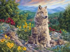 j'adore les loups!