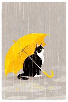 encore de la pluie,sniff!