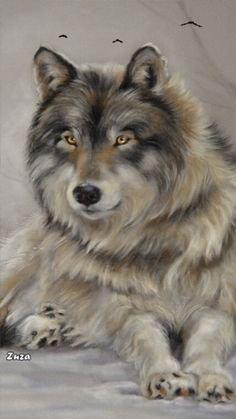 mon loup 🐺 d'amour ❤