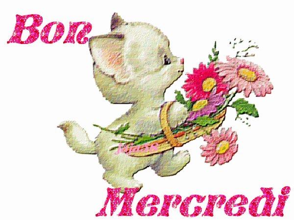 bonjour je vous souhaite un bon mecredi,