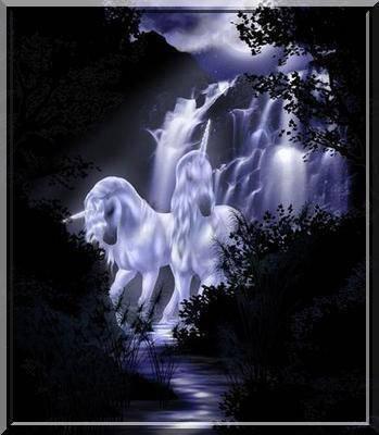 mes belles licornes