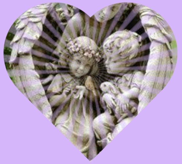 coeur d'anges