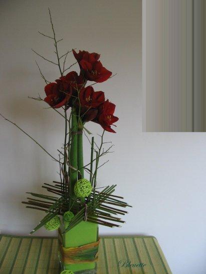 Amaryllis en ceinture d 39 osier art floral bleuette010 for Amaryllis fleuriste