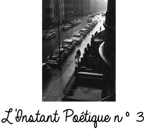 L'INSTANT POETIQUE III