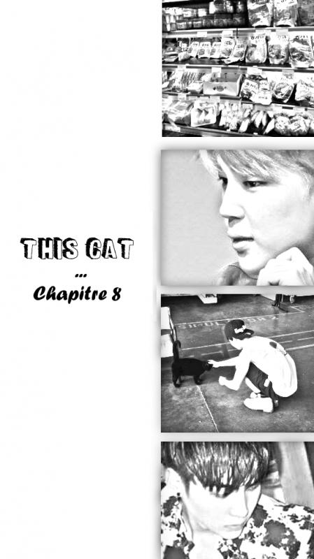 This Cat Chapitre 8 無実のですか ?