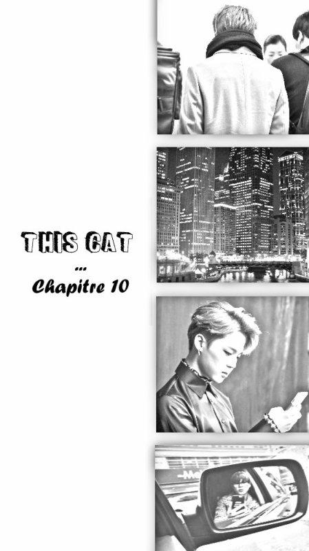 This Cat Chapitre 10 秘密