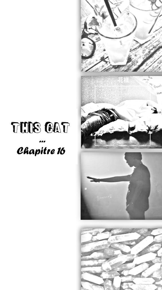 This Cat Chapitre 16 シェーディング