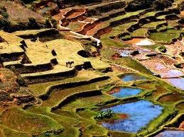 ♥ MADAGASCAR ♥ Mon Pays , Mon île Rouge !