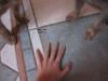 Storyofdogs