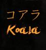 xPerfect-Koala