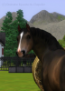 Histoire--Sims