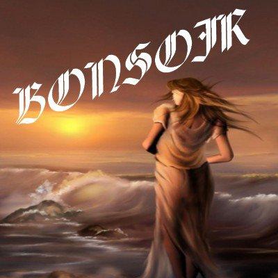 BONSOIR MES AMIS