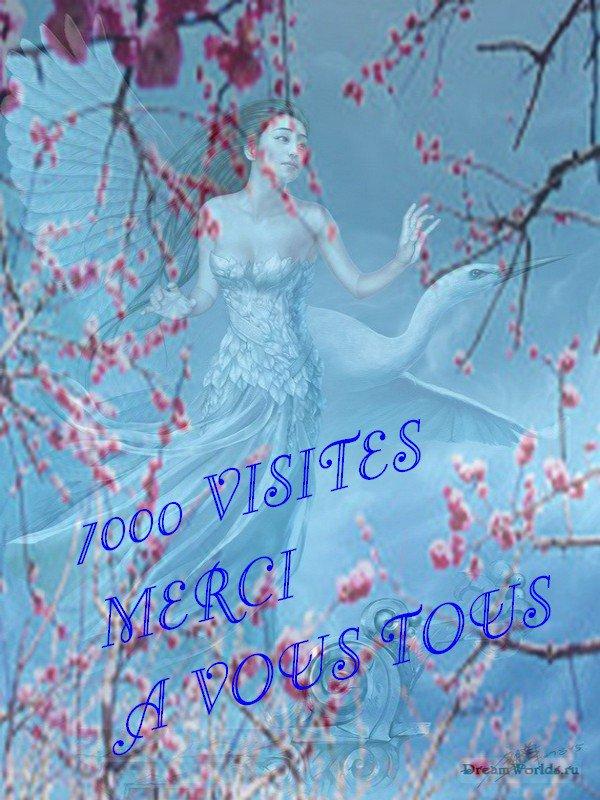 7000 VISITES