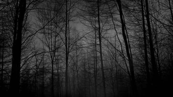 Symphony of the Dead (bouba1369)