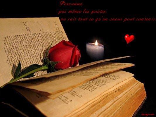 Nous sommes des livres ....