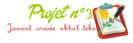 Projet n° 3 : Jument Sorraia