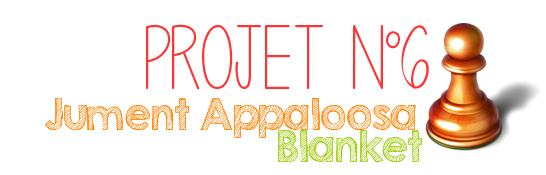 Projet n°6 : Jument Appaloosa Blanket / A VENDRE /