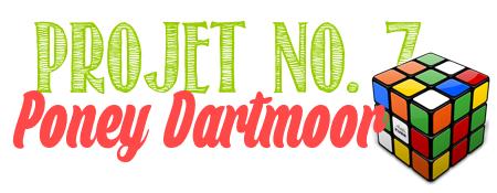 Projet n°7 : Poney Dartmoor.