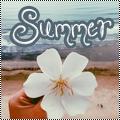 Pack 19 : Summer