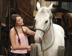 ~Le cheval de Miley~